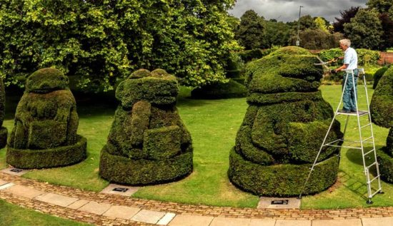 £500 To Spend At Henchman For Your Garden